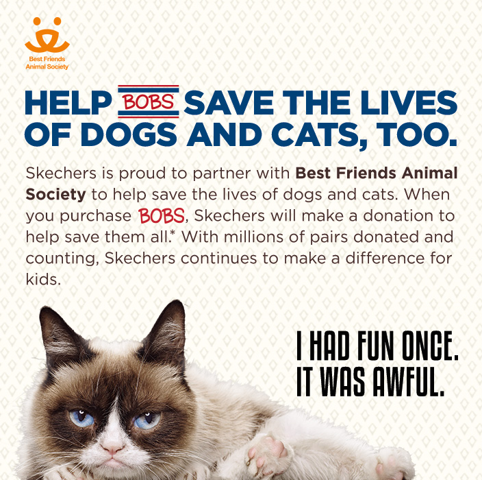 Help BOBS save the lives of dogs and cats, too