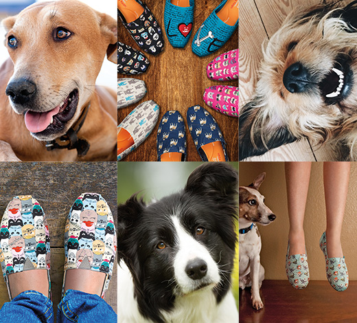 find out more about Skechers BOBS and relations with Best Friends Animal Society